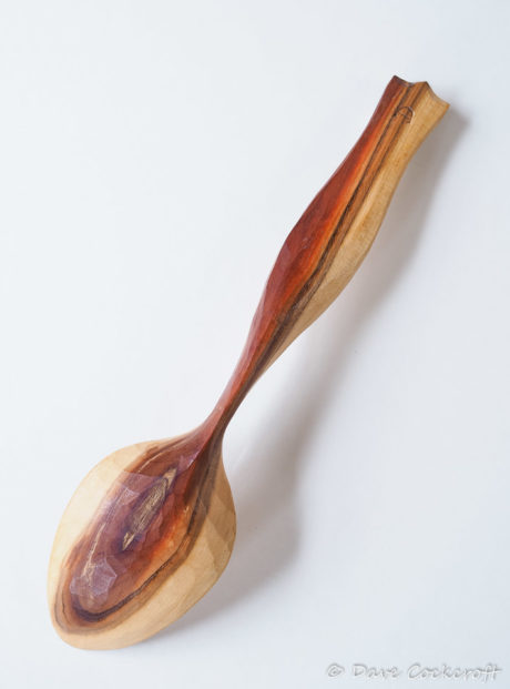 Blackthorn dolphin spoon #1