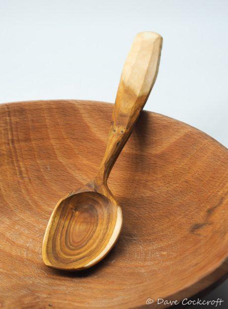 Cotinus eating spoon